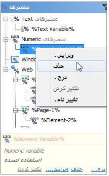 منوی حذف متغیر Numeric در برنامه ویراستار