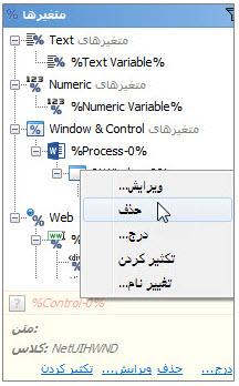 منوی حذف متغیر Window & Control در برنامه ویراستار